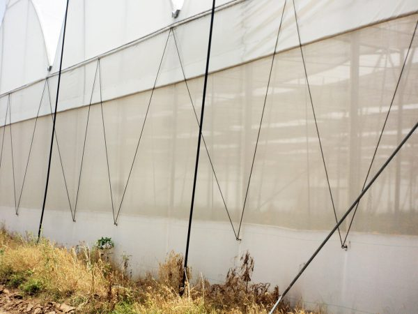 Greenhouse-Insect-Net